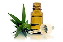 Homöopathie wurde in der Vergangenheit sehr wirksam eingesetzt.