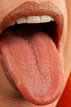 Faust im Mund bedeutet