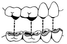 Aufeinandertreffen der Zähne